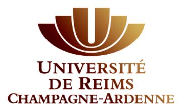 Logo reims university partenaires