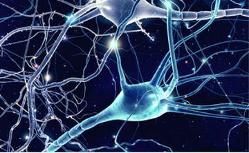 Chu reims sclerose en plaques
