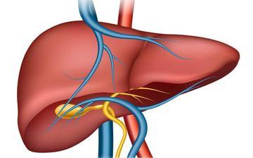 Chu reims hepatites virales