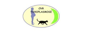 Chu reims toxoplasmose